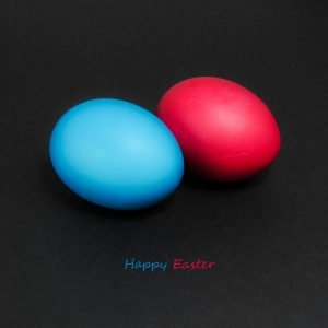 Image: 'Happy Easter, flickr' http://www.flickr.com/photos/59319911@N00/4489458680Found on flickrcc.net