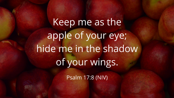 Psalm17:8.PNG
